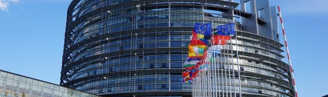 La ONC pide a los eurodiputados españoles que no firmen una declaración contra la importación de trofeos de caza