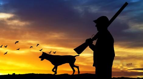 La Oficina Nacional de la Caza muestra su apoyo al sector de la caza con perros, atacado injustamente en base a datos falsos