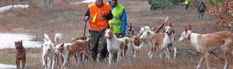 La caza, motor de desarrollo rural