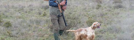 Sobre el auto que prohibe cautelarmente la caza en Castilla y León