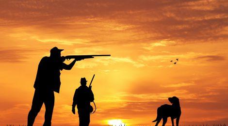 Aguantan los cazadores