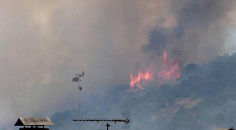 La ONC responde a las mentiras de protectoras y grupos animalistas sobre lo que está ocurriendo en el incendio de Cenicientos